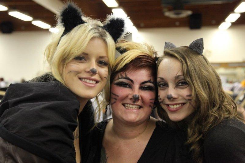 calgary-cat-show-205