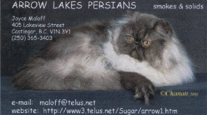 Arrow-Lake-Persians-w