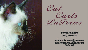 denise_cats_business_card_2015