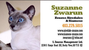 zwarum-cat-card